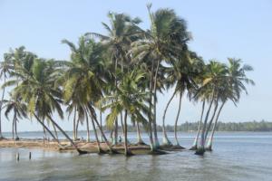 Ghana9